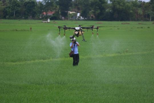 Nông dân xứ Quảng lần đầu thấy phun thuốc bằng thiết bị bay - Ảnh 4.