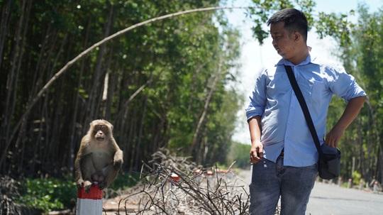Việt Nam được cho anh hùng bảo vệ môi trường - Ảnh 2.
