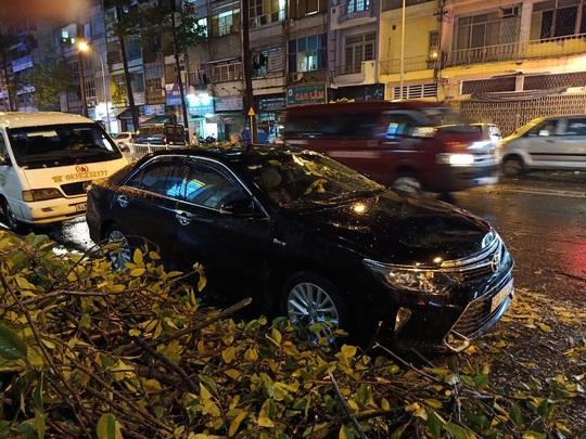 Mưa to cây cổ thụ gãy đổ trúng nhiều người đè bẹp xe ô tô - Ảnh 3.
