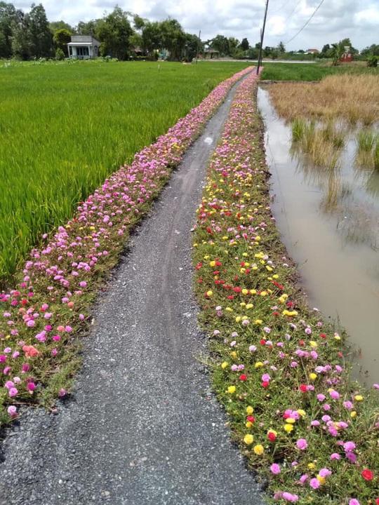 Chống xả rác, nhiều đường hoa đẹp xuất hiện ở Bình Chánh - Ảnh 3.