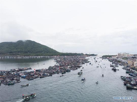 16.700 tàu cá Trung Quốc được cởi trói, sắp tràn xuống biển Đông - Ảnh 2.
