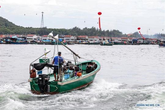 16.700 tàu cá Trung Quốc được cởi trói, sắp tràn xuống biển Đông - Ảnh 6.