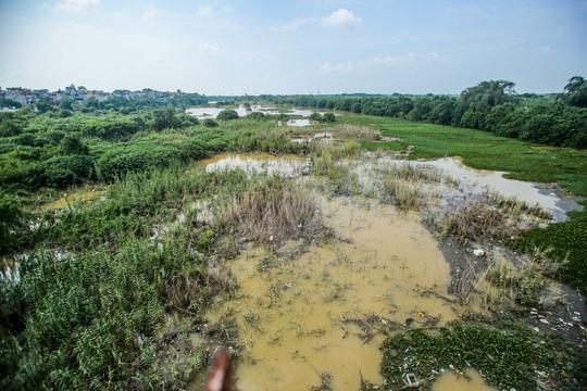 CLIP: Lạ lẫm bãi giữa sông Hồng những ngày nước ngập - Ảnh 2.
