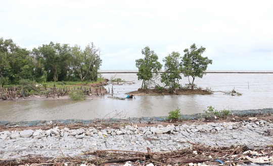 Tân Bí thư tỉnh Cà Mau trực tiếp kiểm tra đê biển bảo vệ hàng trăm ngàn hộ dân - Ảnh 3.