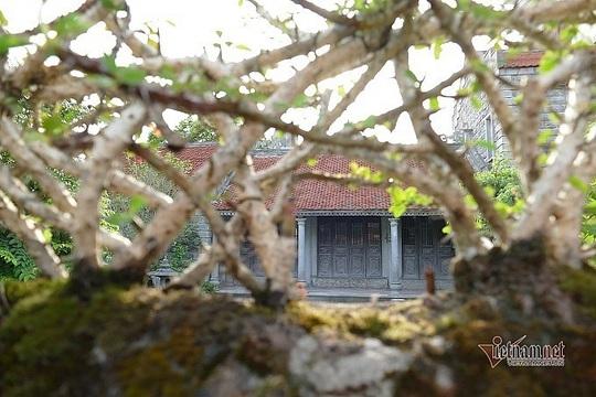 Có gì trong ngôi nhà bằng đá ở Ninh Vân mà nhiều người mê đắm? - Ảnh 4.