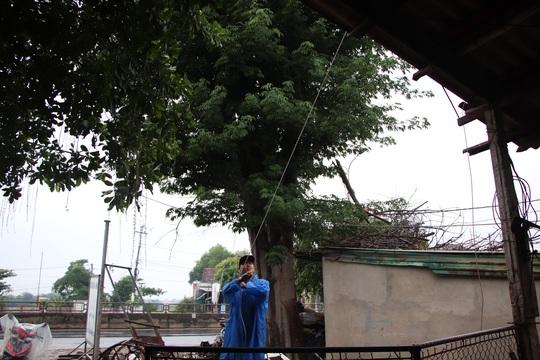 Đà Nẵng- Quảng Nam cho học sinh nghỉ học tránh bão - Ảnh 2.