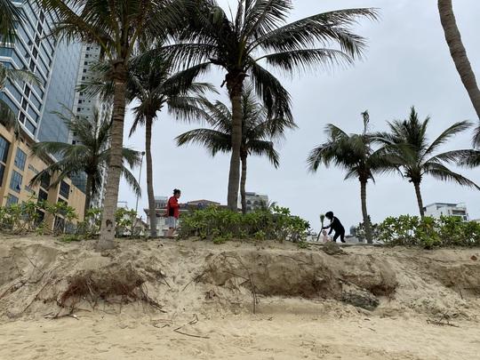 Nhiều khu vực trên bờ biển Đà Nẵng bị xói lở nặng - Ảnh 2.