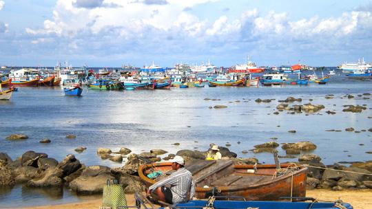 Phú Quý xa mà gần - Ảnh 1.