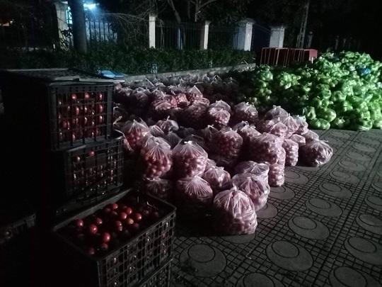 Nghệ sĩ chung tay giải cứu nông sản Hải Dương - Ảnh 2.
