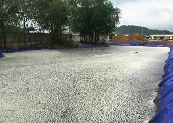 Công ty vàng mã chôn ống xả thải thẳng ra sông