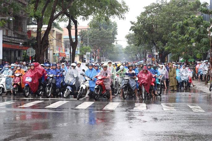 APEC 2017: Người dân Đà Nẵng đội mưa chờ xem quái thú - Ảnh 4.
