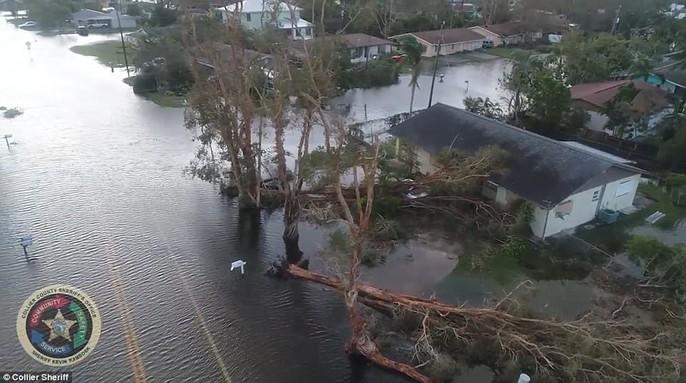 Mỹ: Florida bị tắt công tắc điện trên toàn bang - Ảnh 12.