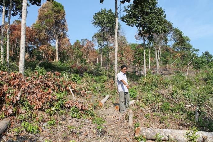 Diễn biến mới nhất vụ sai phạm trong quản lý đất đai ở Phú Quốc - Ảnh 1.