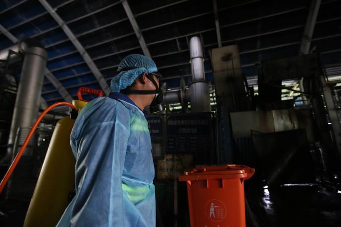 Tiếp cận lò tiêu hủy hàng ngàn con heo bị tiêm thuốc an thần - Ảnh 10.