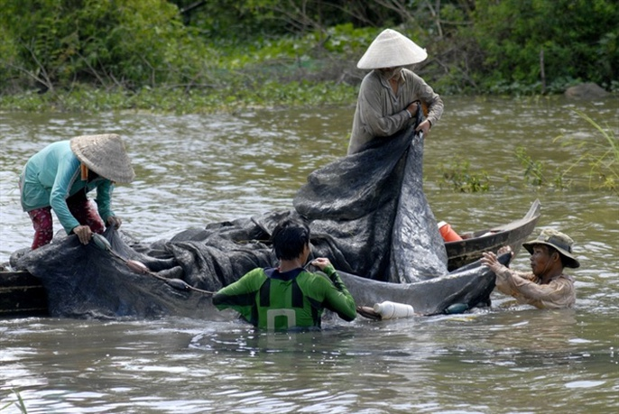 Cận cảnh săn, bắt, hái, lượm mùa nước nổi - Ảnh 12.