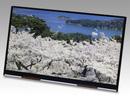 Màn hình 10-inch 4K đầu tiên