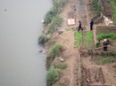 Phát hiện thi thể người đàn ông nổi trên sông Hồng