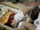 Mốt đám tang xa hoa cho thú cưng ở Trung Quốc