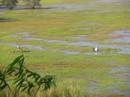 Quan ngại về báo cáo dòng chính sông Mê Kông