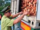 Tạm giữ container chở hàng chục tấn gỗ quý