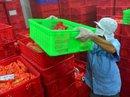 Thủ tướng chỉ đạo giải quyết kiến nghị của Vietfoods