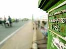 Sài Gòn nhớ những cây cầu