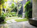 Trồng cây xanh quanh nhà cần lưu ý gì về phong thủy?