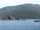 Gỡ bế tắc cho cảng Vân Phong