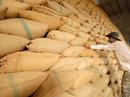 Trung Quốc dựng thêm rào cản gạo Việt