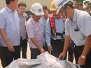 160 tấn bùn Formosa nhập từ Trung Quốc có giấy tờ hợp lệ