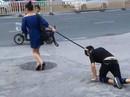Cô gái xích cổ bạn trai, dắt đi dạo như… cún cưng
