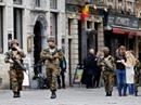 EU thúc đẩy chia sẻ thông tin tình báo