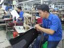 Tổ chức thi tay nghề cho công nhân