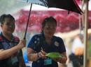 Hàng trăm người đội mưa đến phố hàng rong Bách Tùng Diệp
