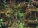 Bí ẩn chưa giải về 500 ngôi mộ Hời trên núi ở Phú Yên