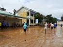 Cơ cấu nợ, miễn giảm lãi suất cho người dân vùng bão lũ