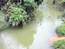 Vụ lật ghe trên suối Sa Mách: Vợ chết, chồng bị khởi tố
