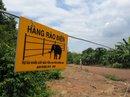 Cảnh báo nguy hiểm ở hàng rào điện ngăn voi