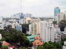 Lợi nhuận cao, doanh nghiệp bất động sản mới tăng vọt