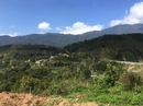Nhiều điểm nóng phá rừng