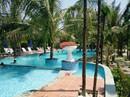 Phá rừng phòng hộ xây bể bơi trái phép