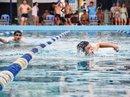Tổ chức giải bơi lội CNVC-LĐ