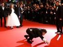 Cannes 70: Tiếng cười, nước mắt và... khỉ!