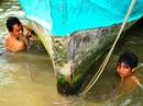"""Gặp người """"sống dưới đáy sông"""" ở Cà Mau"""