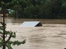 Cứu trợ bão lụt: Phải có cái tâm vì dân nghèo trước đã!