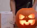 Trang trại bí ngô hút khách dịp Halloween tháng 10