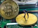 "Cơn sốt nhập ""trâu cày"" Bitcoin"