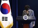Tấn bi kịch Park Geun-hye