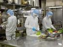 Bộ LĐ-TB-XH lên tiếng về việc lao động đi Đài Loan không mất phí