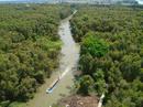 Đồng Tháp Mười phát triển du lịch sinh thái